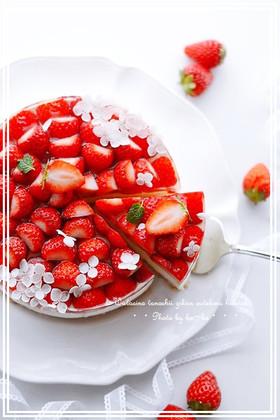 本格苺のレアチーズケーキ
