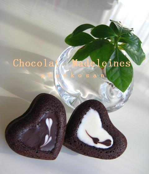 ガトーショコラ風チョコマドレーヌ