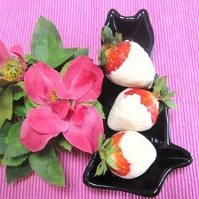 バレンタイン❤簡単!苺のチョコがけ綿帽子