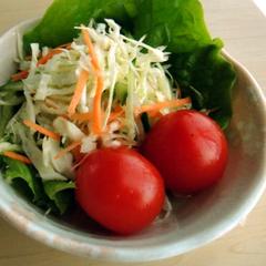 サラダに付け合せに☺虹色の千切りキャベツ