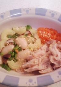 犬ご飯(鶏とマカロニでご飯)