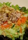 おつまみにも野菜をモリモリ♬簡単サラダ