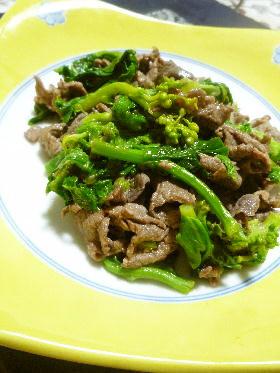 牛肉と小松菜のオイスター炒め