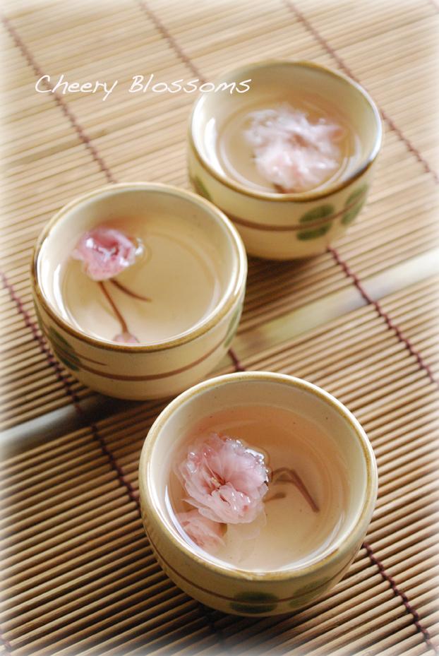 春を愉しむ✿桜湯
