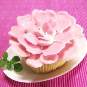 母の日✿簡単!カーネーションのプチケーキ