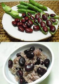 ●赤そら豆のごはん●