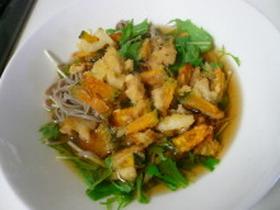 野菜のかき揚げと水菜の温かいお蕎麦