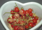 マイクロトマトの美味しい食べ方