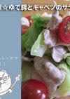 さっぱり☆ゆで豚とキャベツのサラダ