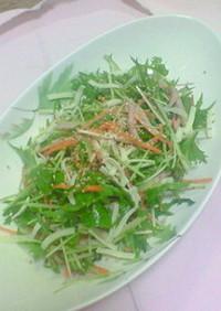 水菜で簡単サラダ
