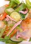 アメリカ 水寒天で中華風サラダ