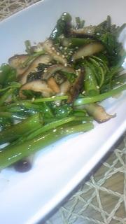 ツウサイ(空芯菜)と椎茸の青菜炒めの写真