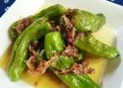博多小料理屋の一品✿ししとうの煮びたし
