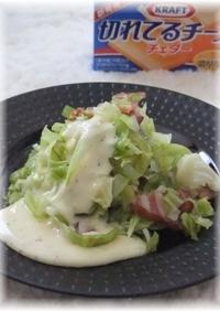 蒸し野菜の濃厚チーズソース
