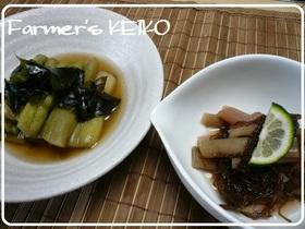 【農家のレシピ】ずいきの煮物と酢の物