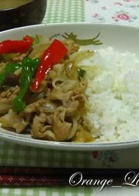 野菜たっぷり❤豚しょうライス♪
