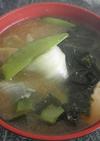 ダシダでレタスとわかめの味噌汁