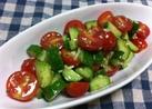 キュウリ☆トマトの簡単イタリアンサラダ