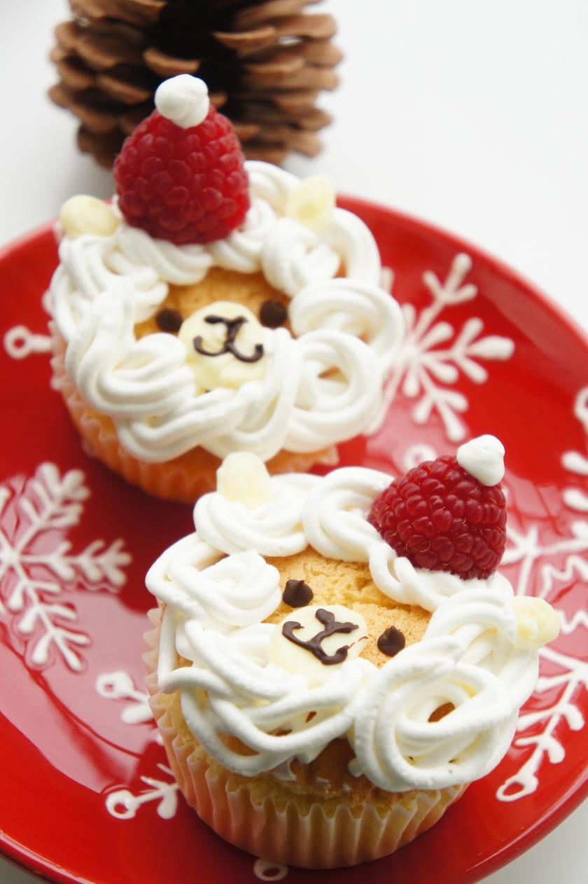 アルパカサンタのミニクリスマスケーキ★