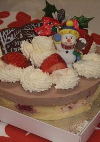 2種類ペーリーのクリスマスケーキ