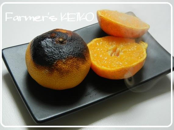 【農家のレシピ】焼きミカン