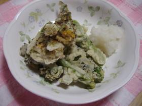 菜の花のサクサク天ぷら