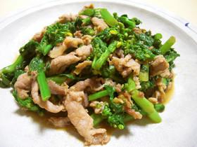 春✿ 菜の花と豚肉のオイスター炒め