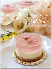 桜ホワイトレアチーズ♪の写真