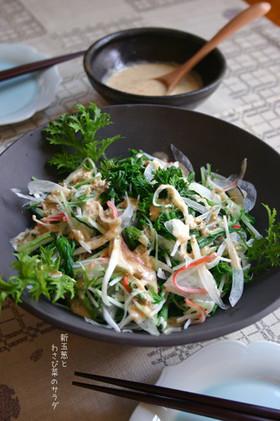 もりもりっ♪【新玉とわさび菜のサラダ】