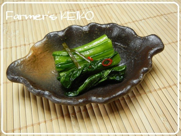 【農家のレシピ】小松菜の浅漬け