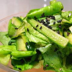 サラダ菜で♬ 焼肉屋さんのサラダ ♬
