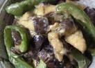 茄子とピーマン…ひこずり☆熊本の郷土料理