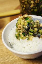 麺つゆで簡単♪夏野菜のダシの写真