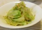 しらすと茹でキャベツの絶品サラダ