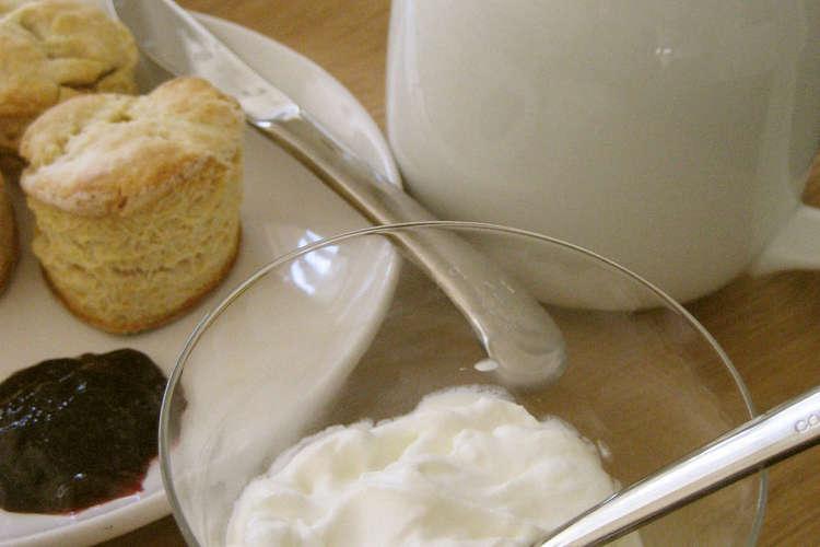クリーム 作り方 クロテッド クロテッドクリームの作り方