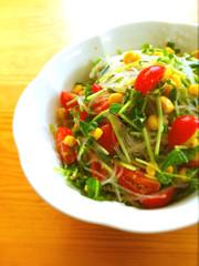 胡麻たっぷり❤豆苗と春雨のサラダの写真