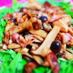 いっぱいきのこと水菜のサラダ