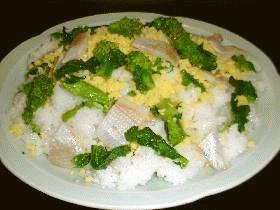 春一番...菜の花のレモン寿司