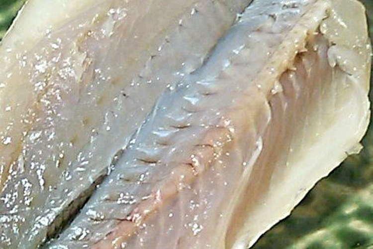 刺身 イシモチ