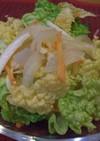 オレンジ白菜と甘酢玉ねぎのサラダ