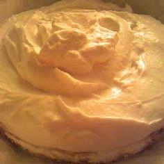 普通の濃厚さ:ふわふわ:レアチーズケーキ