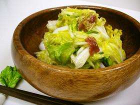 生白菜の梅あえサラダ