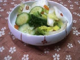 白菜の浅漬け☆柚子風味