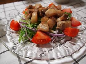 塩豚のがっつりサラダ