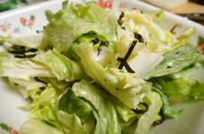 レタスと白菜のマヨサラダ