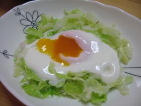 シリコンスチーマー   巣ごもり卵