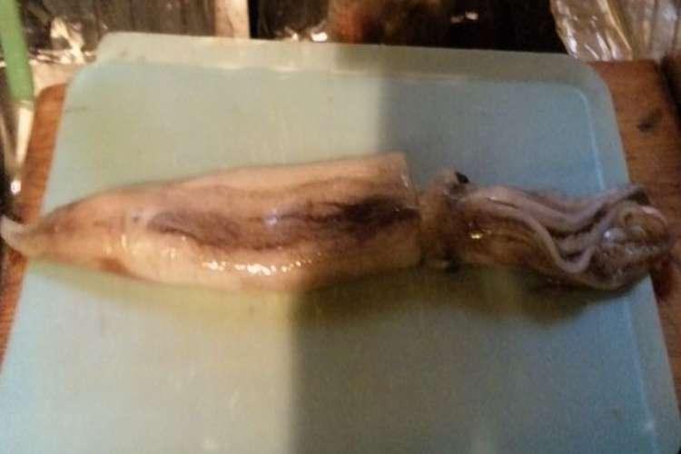 方 イカ の さばき