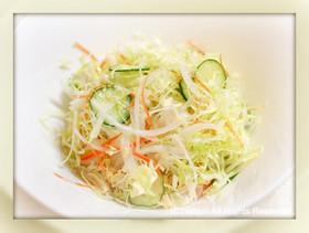 ●常備●野菜サラダのレシピ