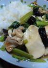 新定番!豆腐と小松菜のオイスター煮込み