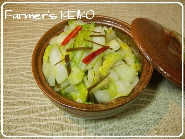 【農家のレシピ】即席☆白菜の浅漬け